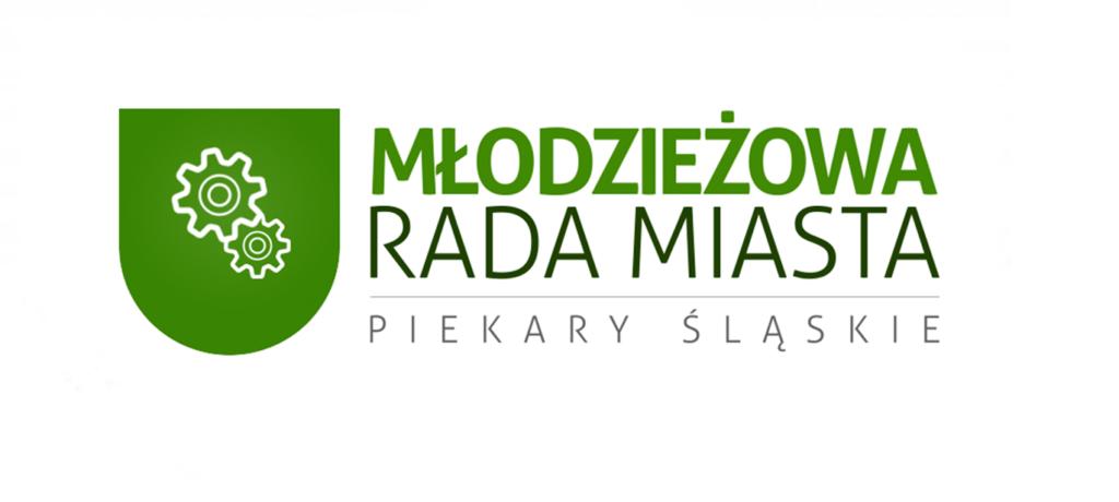 Podsumowanie SPI NIE ŚPI przez  Młodzieżową Radę Miasta Piekary Śląskie